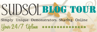 SUDSOL Blog Tour