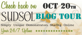 Come back for the SUDSOL Blog Tour - Feb 1, 2013